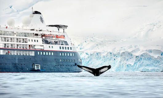 Discover Silversea Cruises Ultimate Antarctic Experience with special airfare offer!