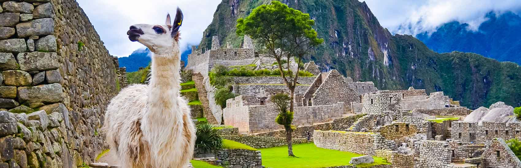 Peru Luxury Tours with Big Five 1