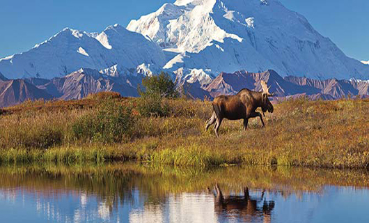 Alaska On Sale with Holland America