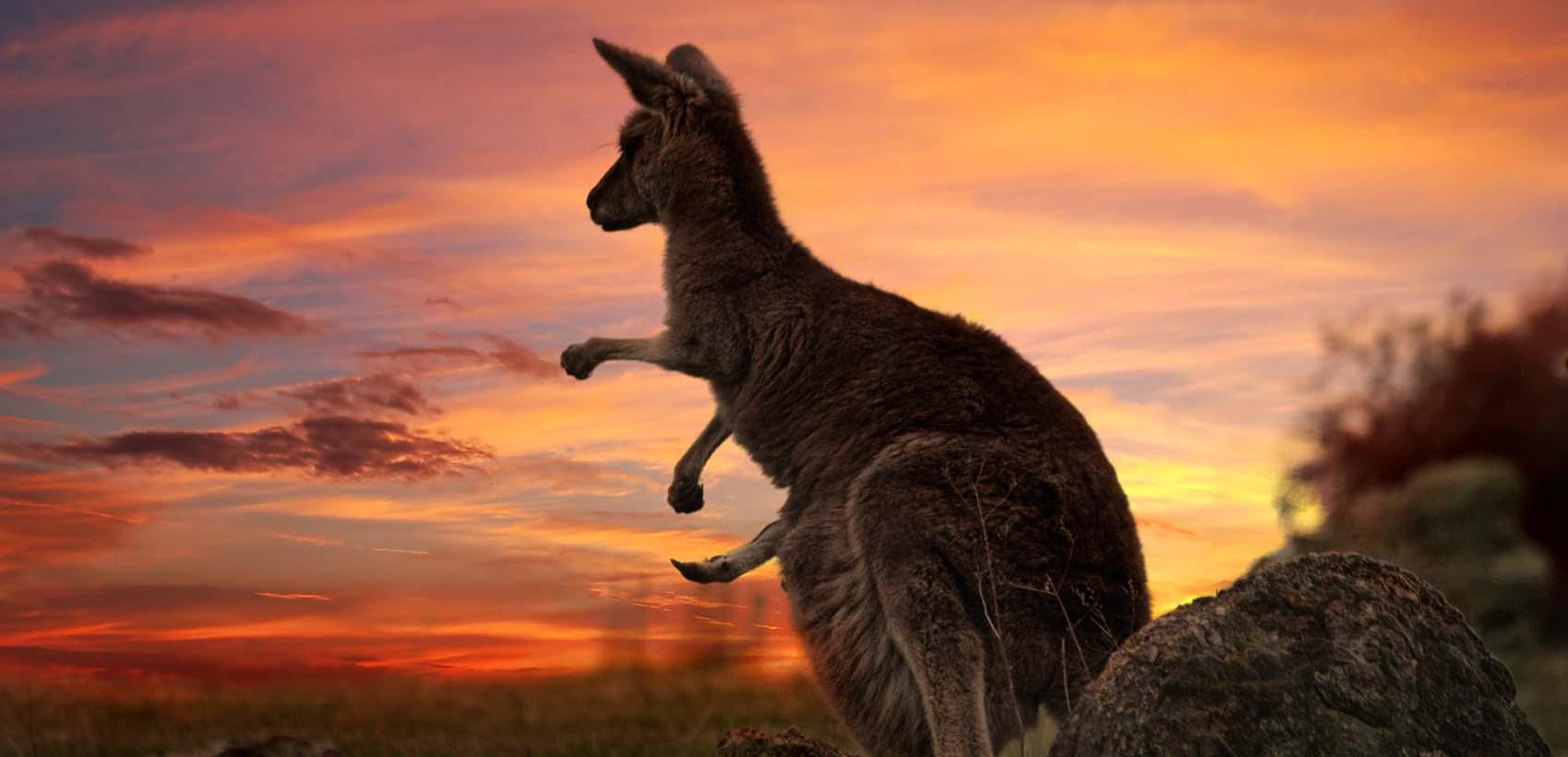 Australia 0