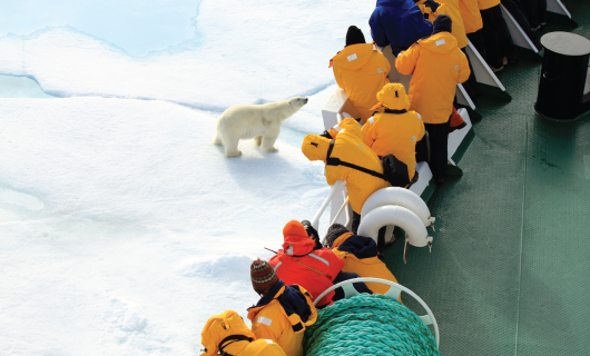 Polar Sale with Quark Expeditions