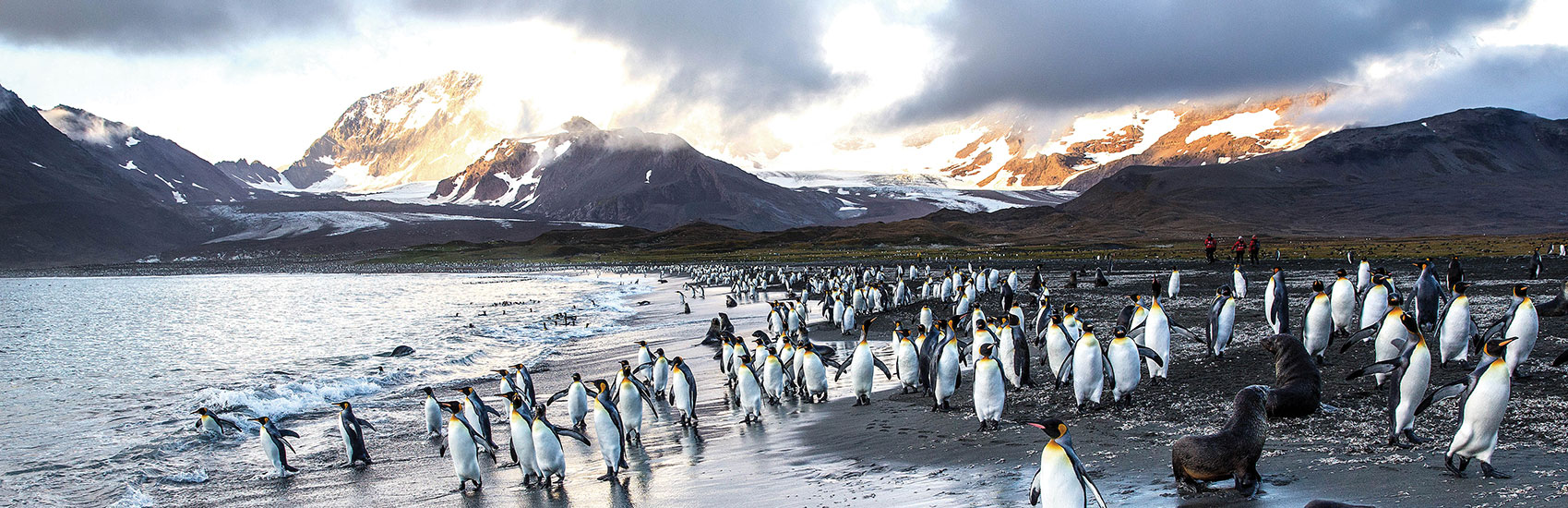 Air Credit Offer with Ponant to Antarctica 0