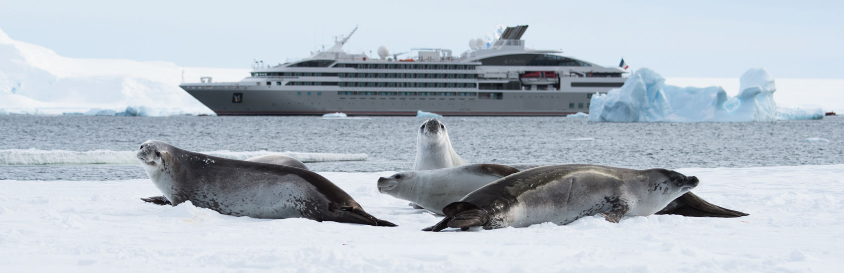 Air Credit Offer with Ponant to Antarctica 3
