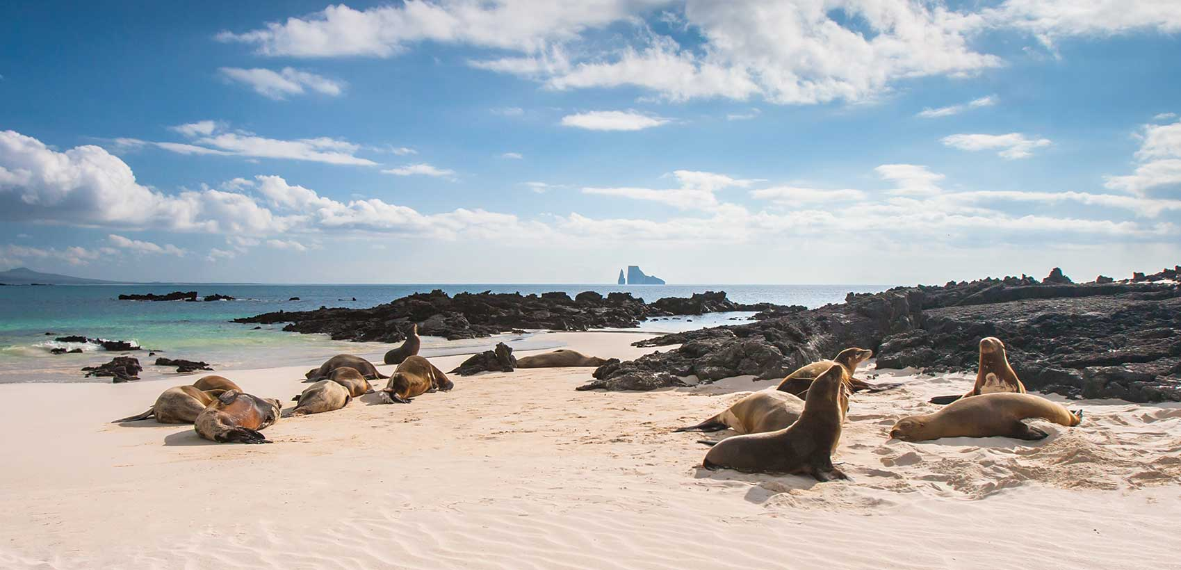 Save up to $2,000 When You Explore Galapagos With Celebrity Cruises 2