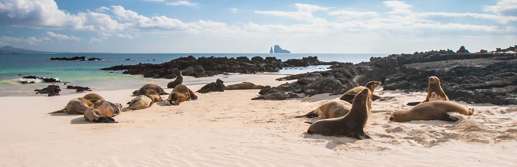Explore with Celebrity Cruises in the Galapagos 2