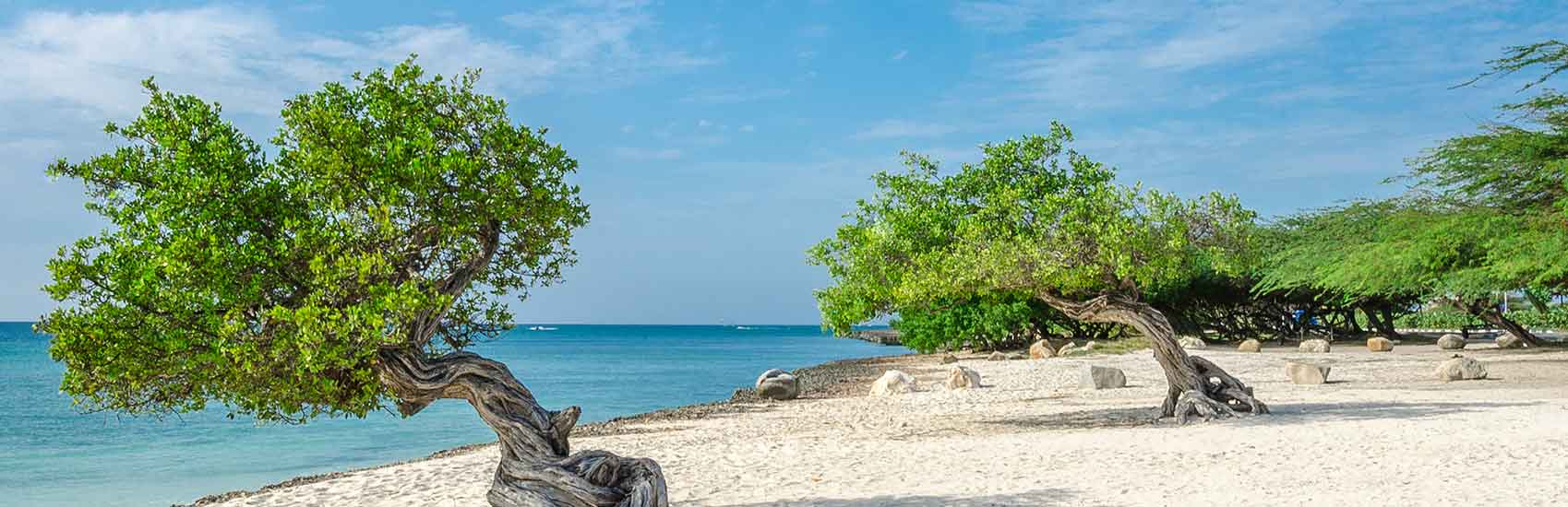 Regent Seven Seas Cruises 2021 World Cruise