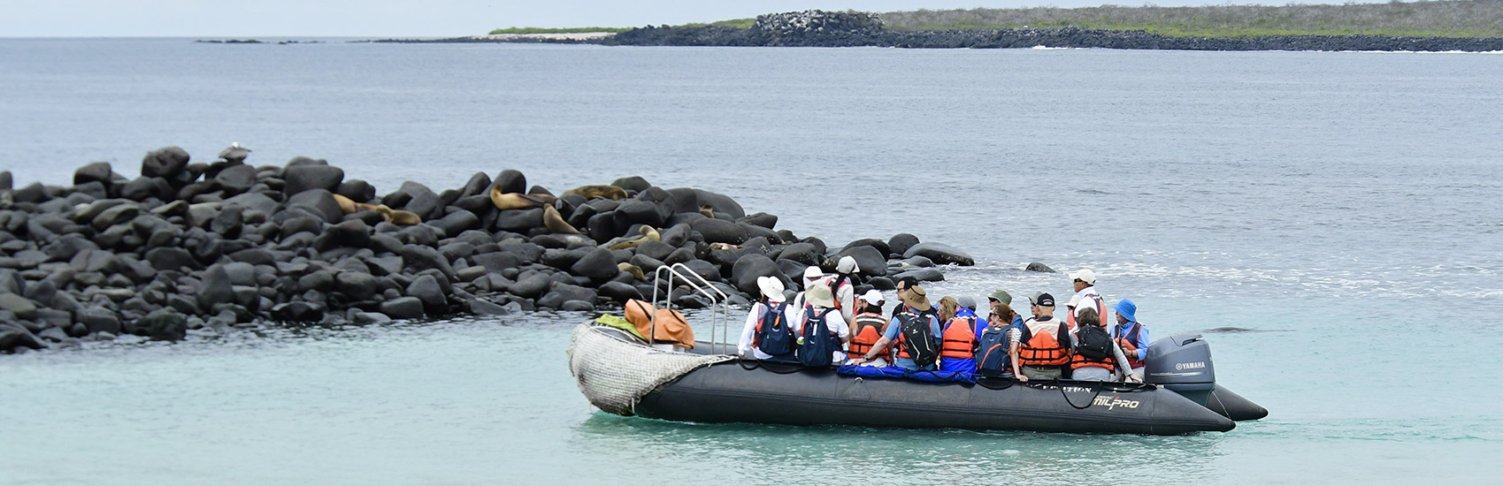 When to explore the Galapagos Islands 0