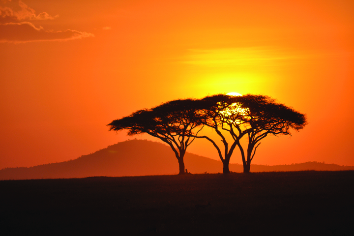 Embrace the spirit of adventure in Africa with Peregrine