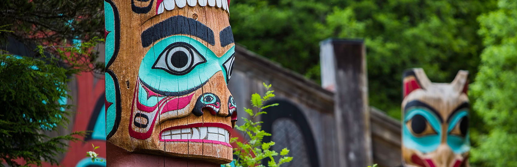 Limited Time Offer to Alaska with Holland America 5