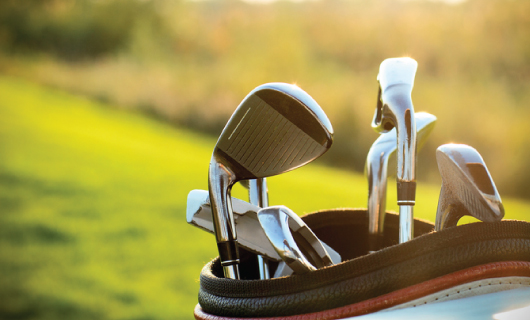 Danube River Cruise for Golfers