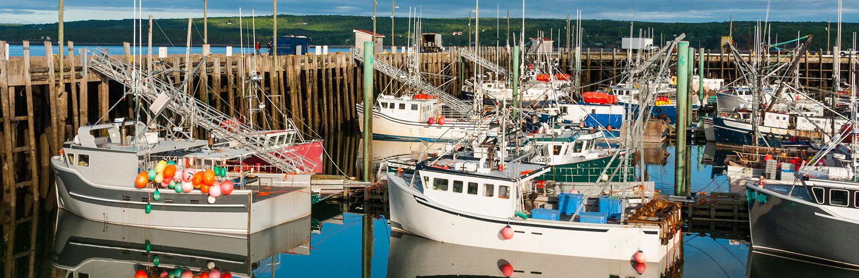 Exclusive Maritime Coastal Wonders Tour 4