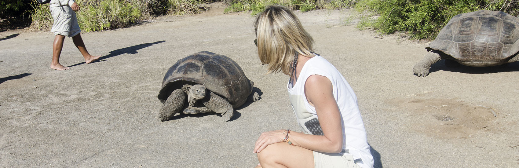 When to explore the Galapagos Islands 1