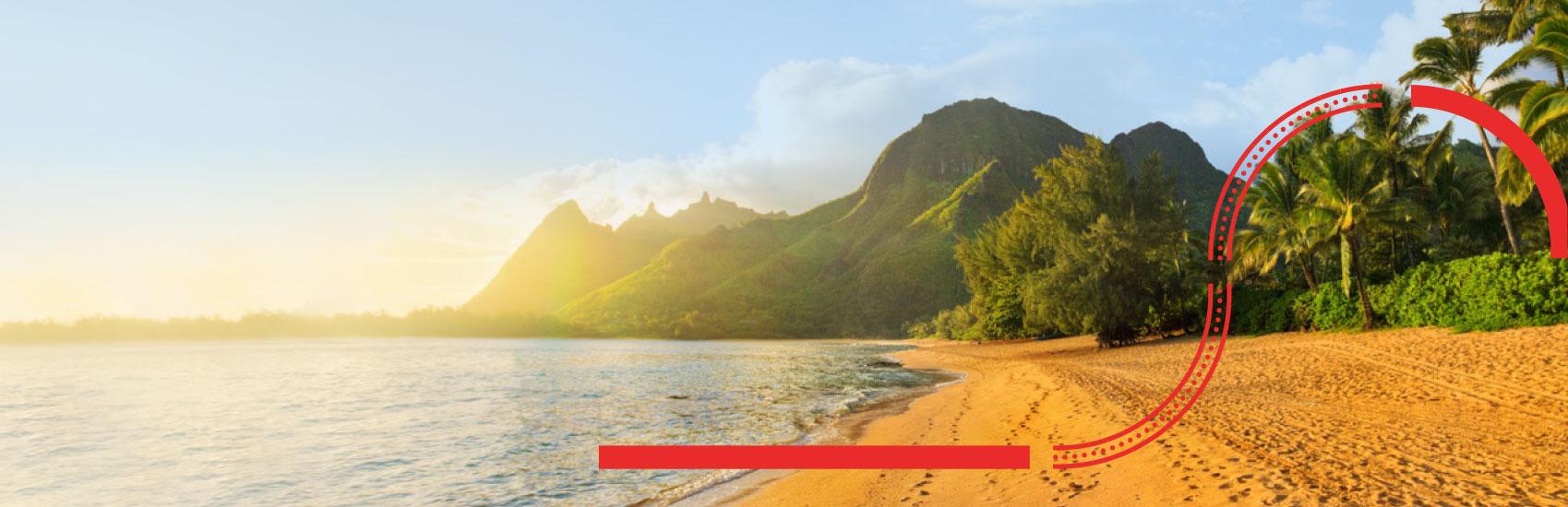 Save the Taxes on Hawaii