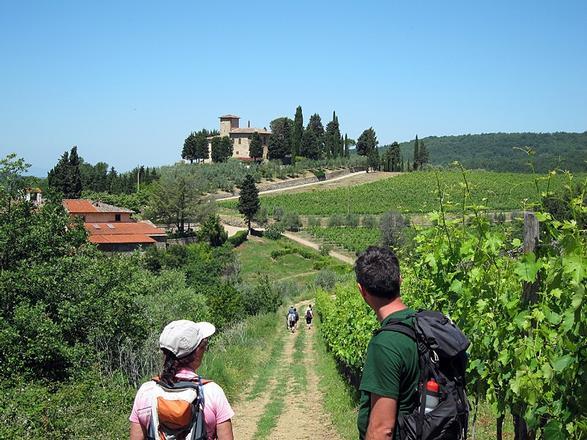 Chianti Walking And Wine (Leisure/Moderate)