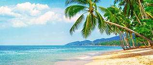 Air Canada Vacations Deals